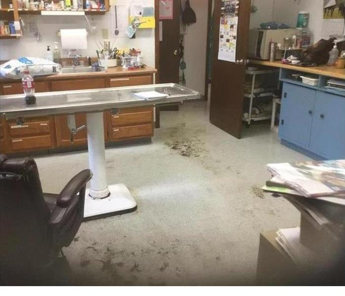 Vet Office Water Damage